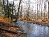 Lower Vancampens Mill Stream.jpg