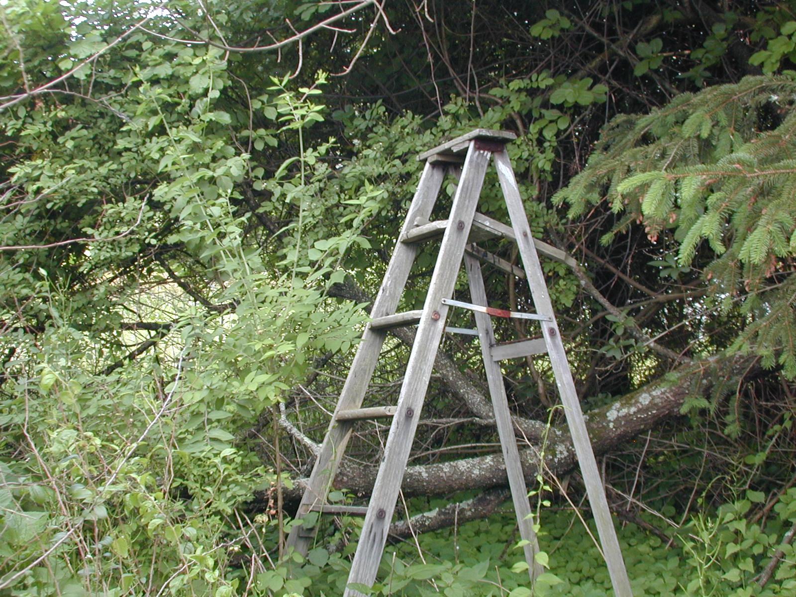 Third unknown house, ladder