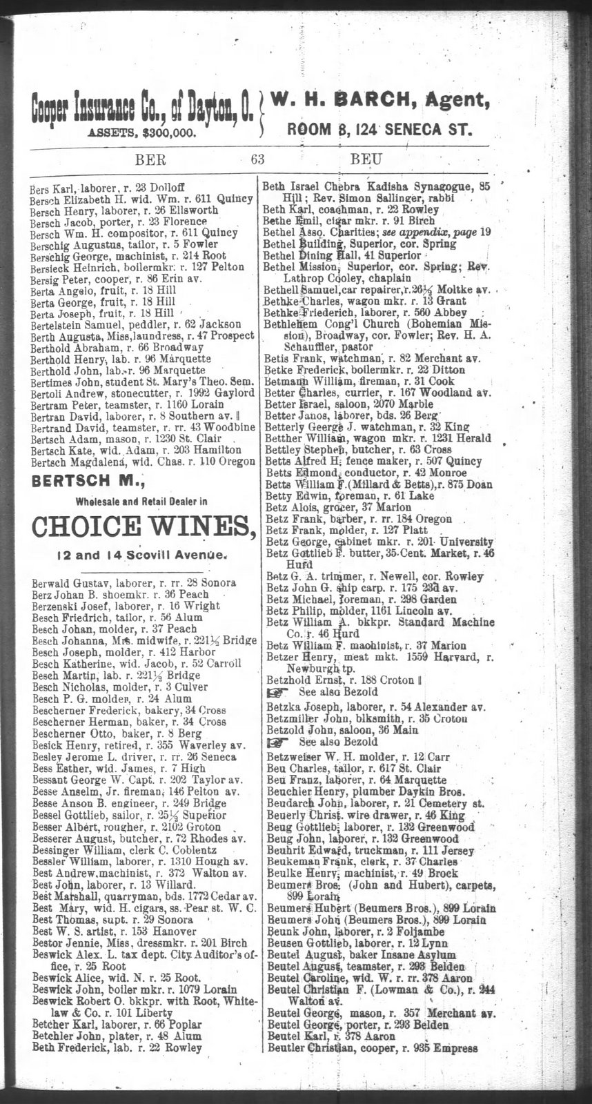 cleveland-city-directory-1885_large