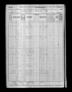 alois-rosa-1870-census-p1_large
