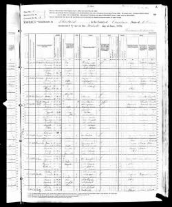 alois-rosa-1880-census_large