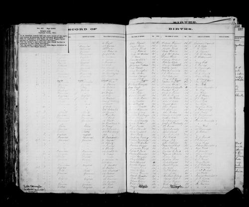 edward-r-birth-record-1876_large