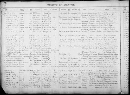 rosina-death-record-1899_large