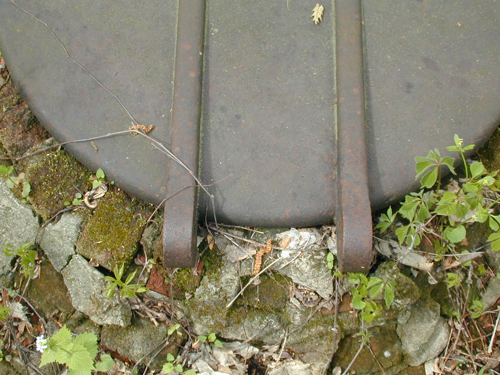 Cast Iron Hatch Lid near Chester Furnace