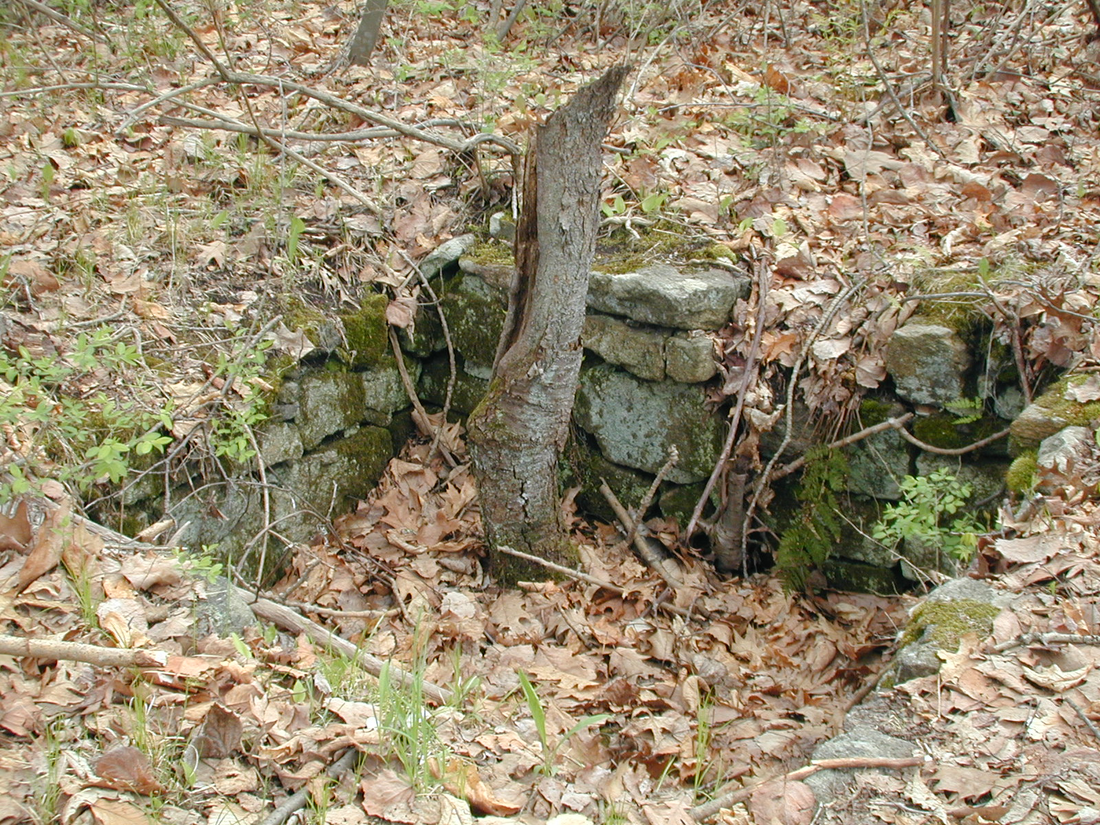 Stone-lined pit a Chester Furnace