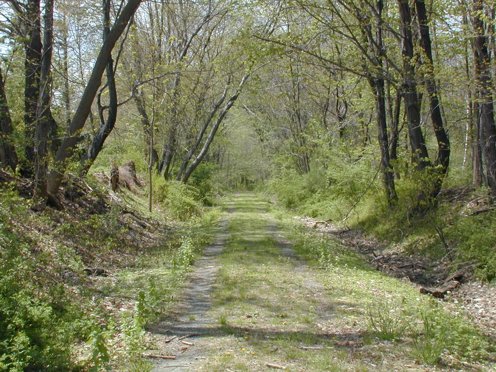 CRNJ Chester Branch Trail