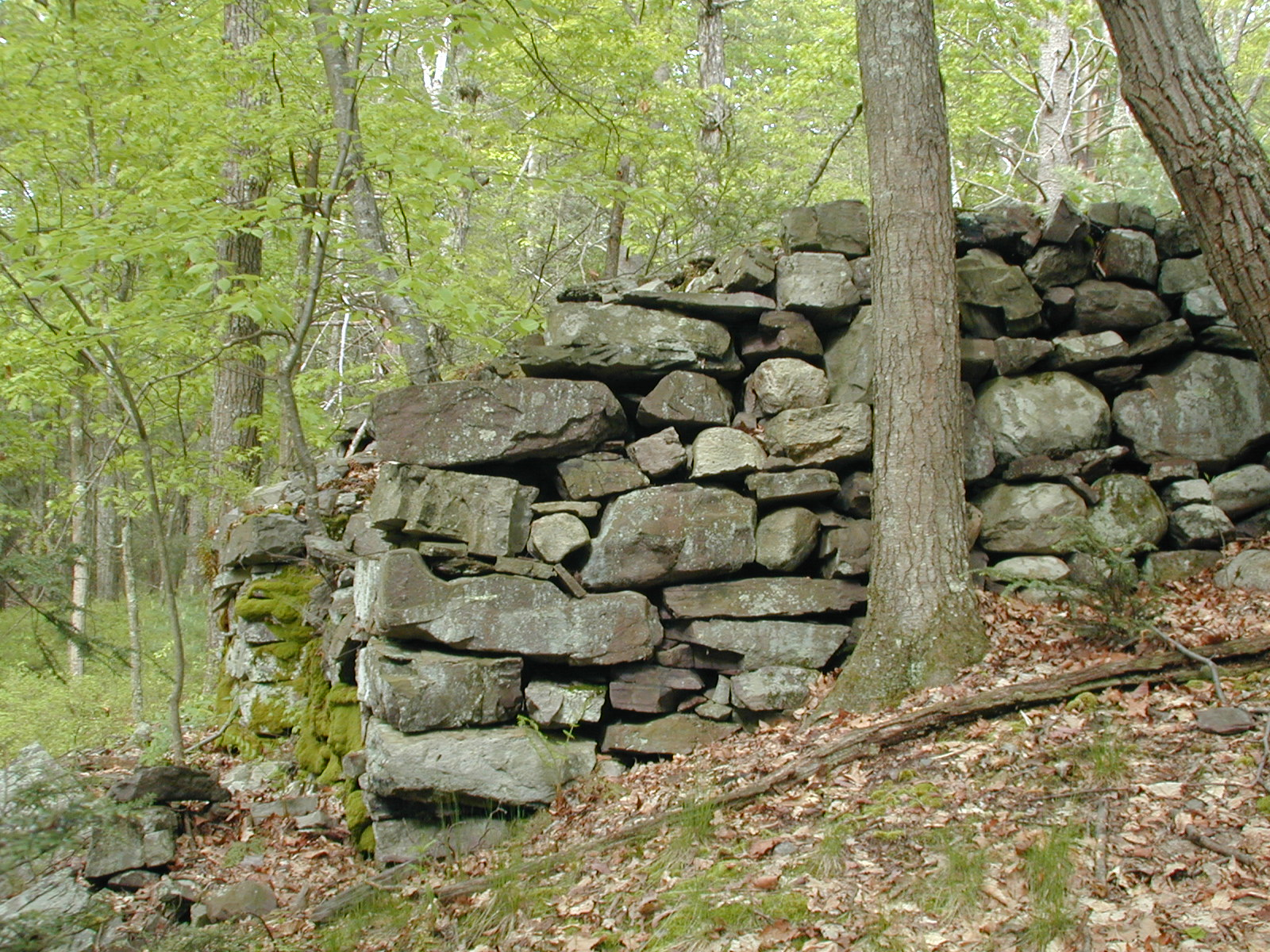 Side view of lime kiln West of Millbrook