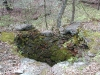 Top view of lime kiln showing pit