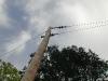 The last pole