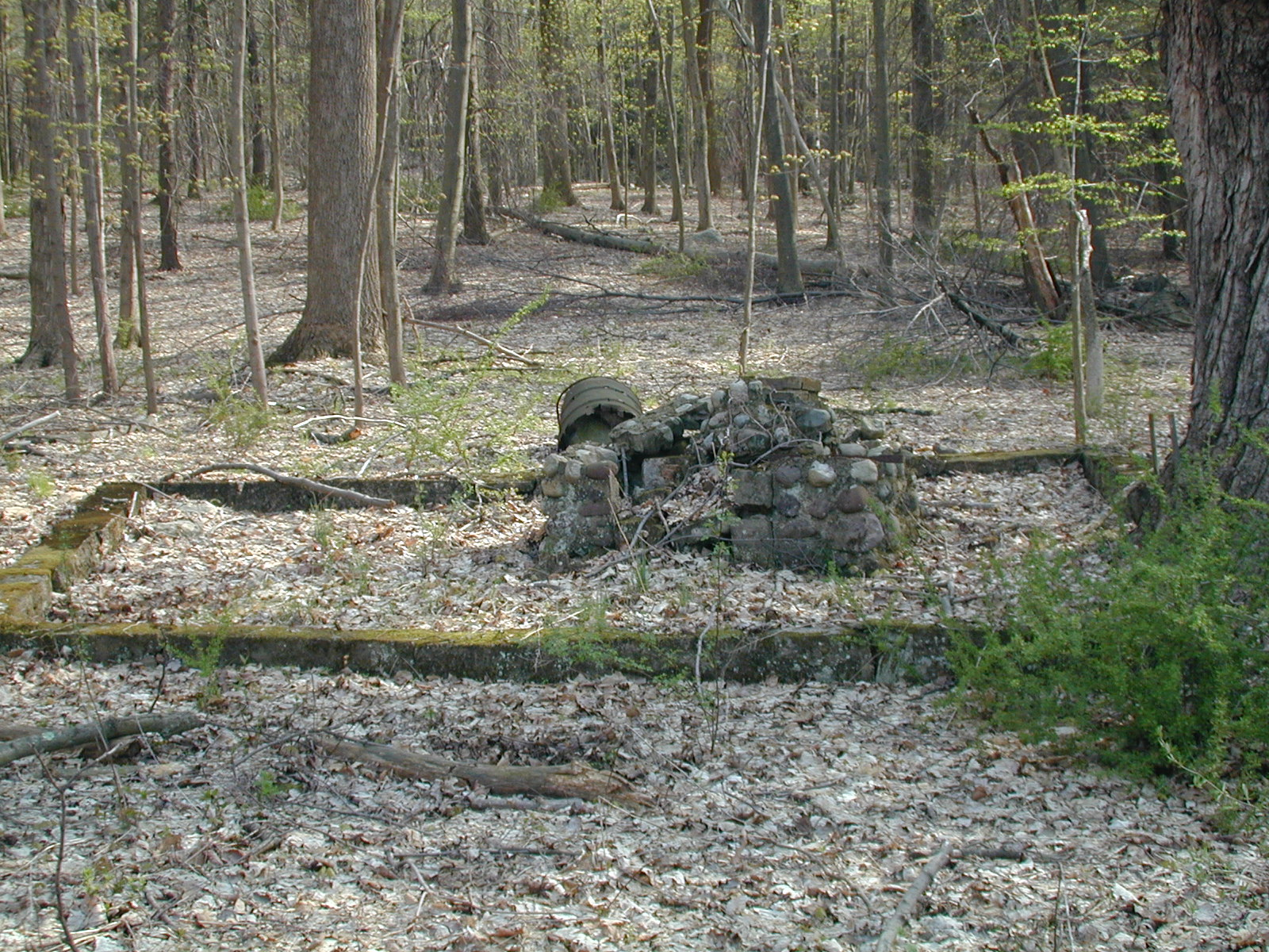 Ruins of picnic area near Donkey's Corners