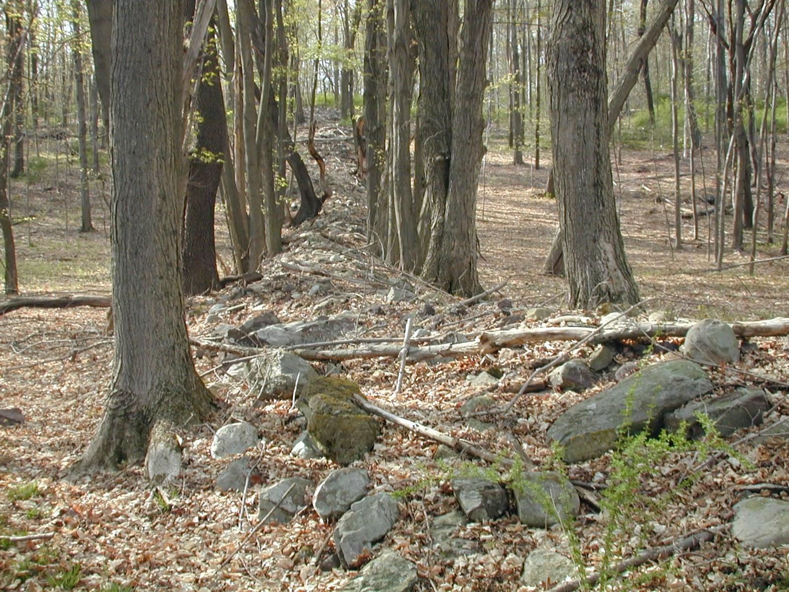 Stone walls north of Millbrook