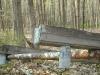 Wooden gutters at Millbrook