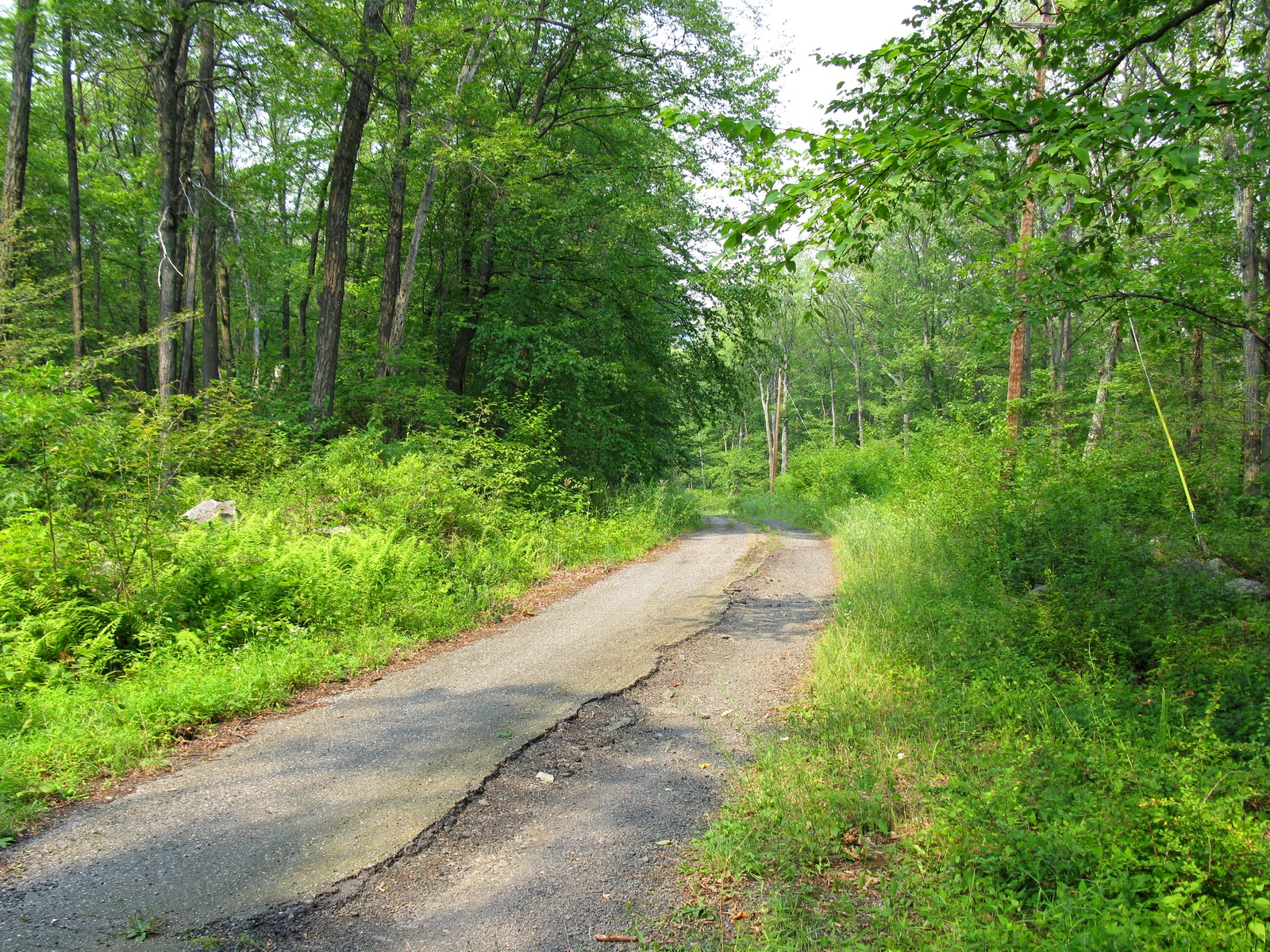 sand_pond_road-crest_south_view.jpg