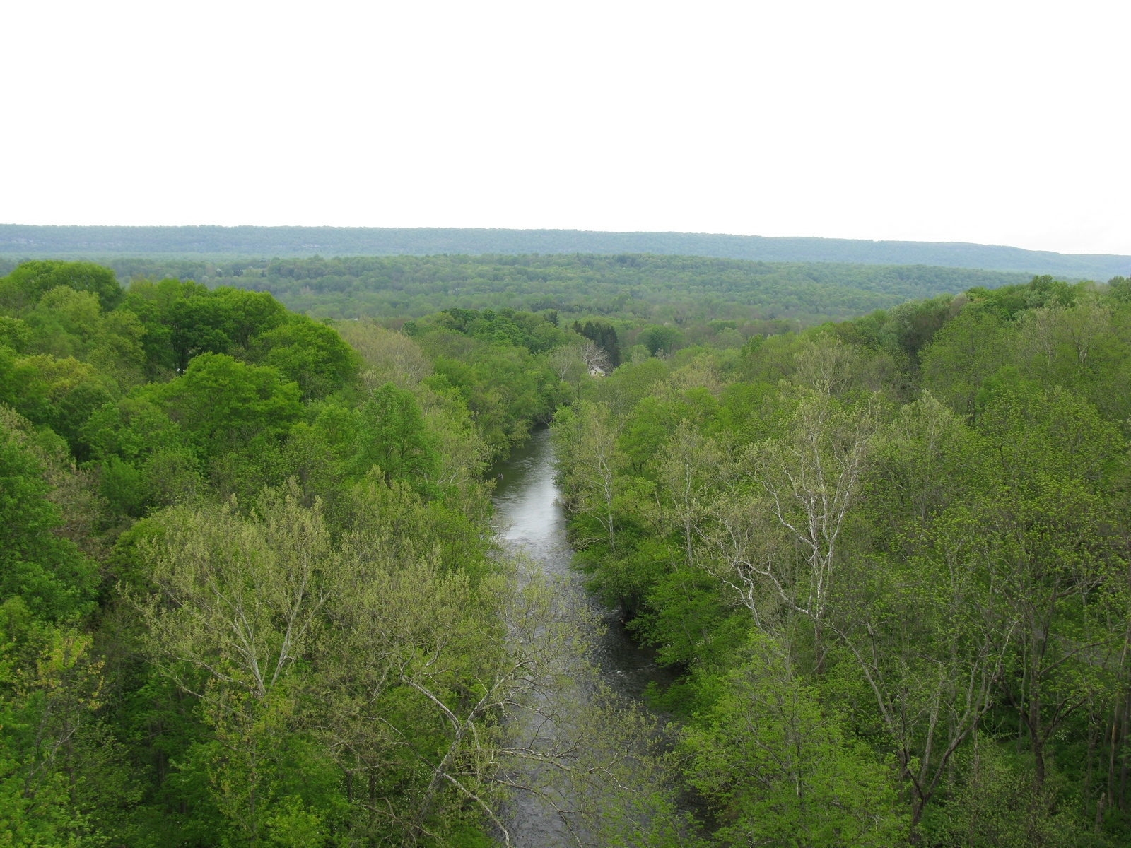 The Paulinskill flowing south from the Viaduct