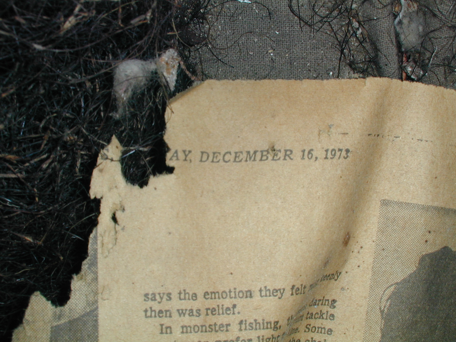 Fragment of the New York Times in the Depue house