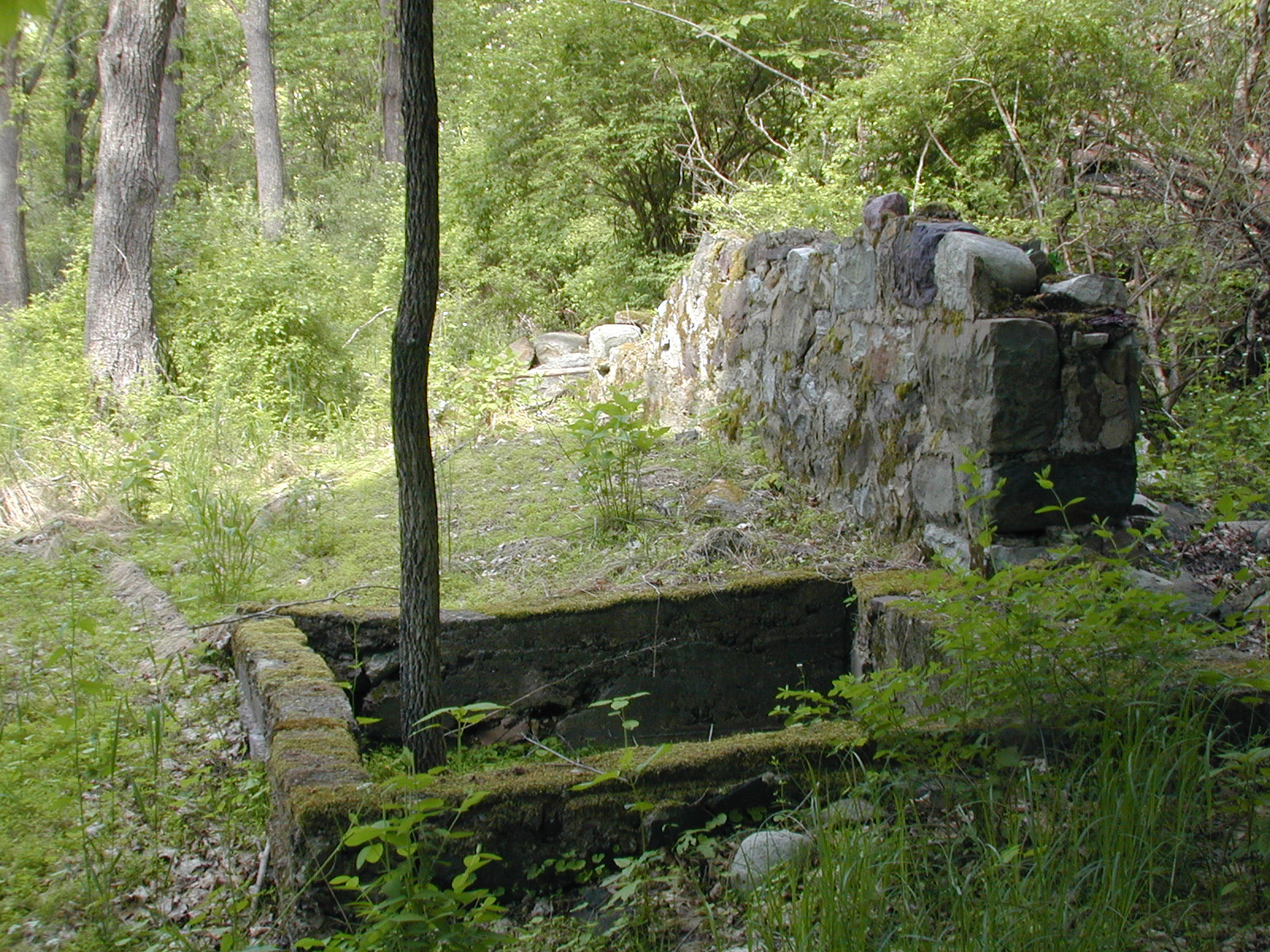 Foundation wall near the Depue garage
