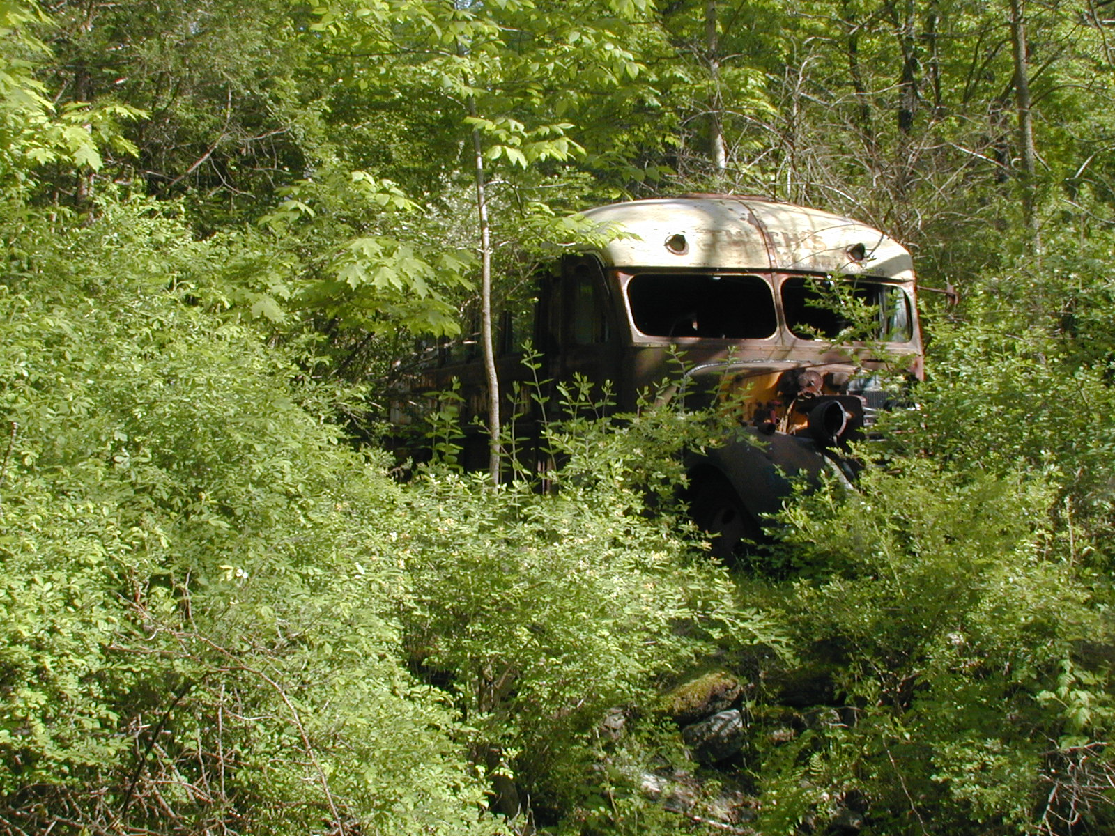 An old bus lying just off the road near the Depue farmhouse