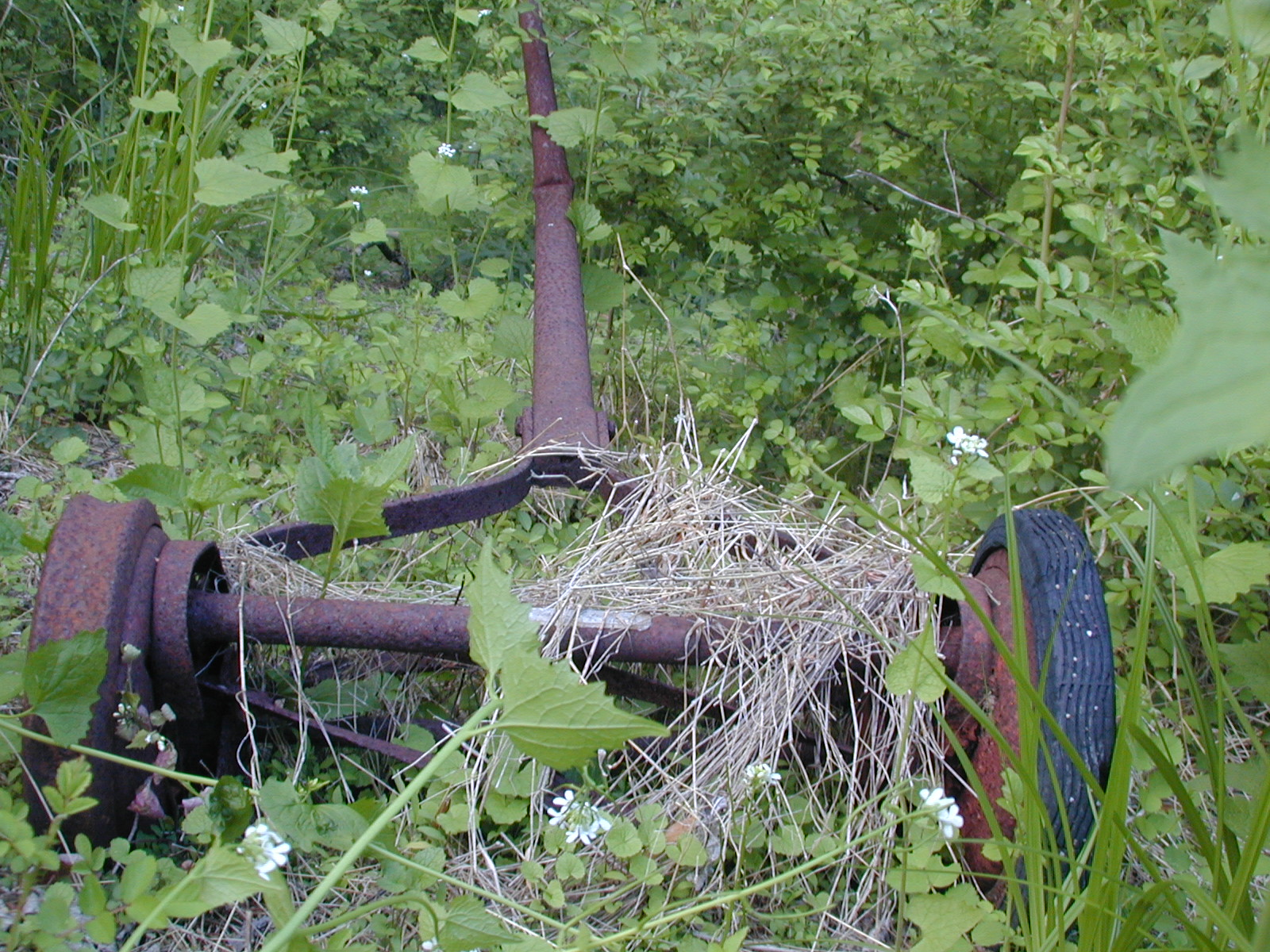 Mower in the yard of the Depue farmhouse