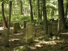 The Depue Cemetary