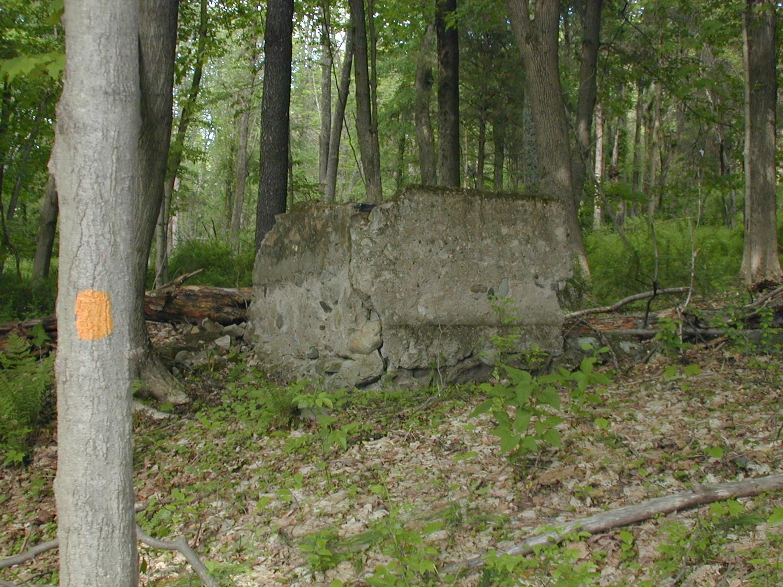 Ruins near the second Depue farm