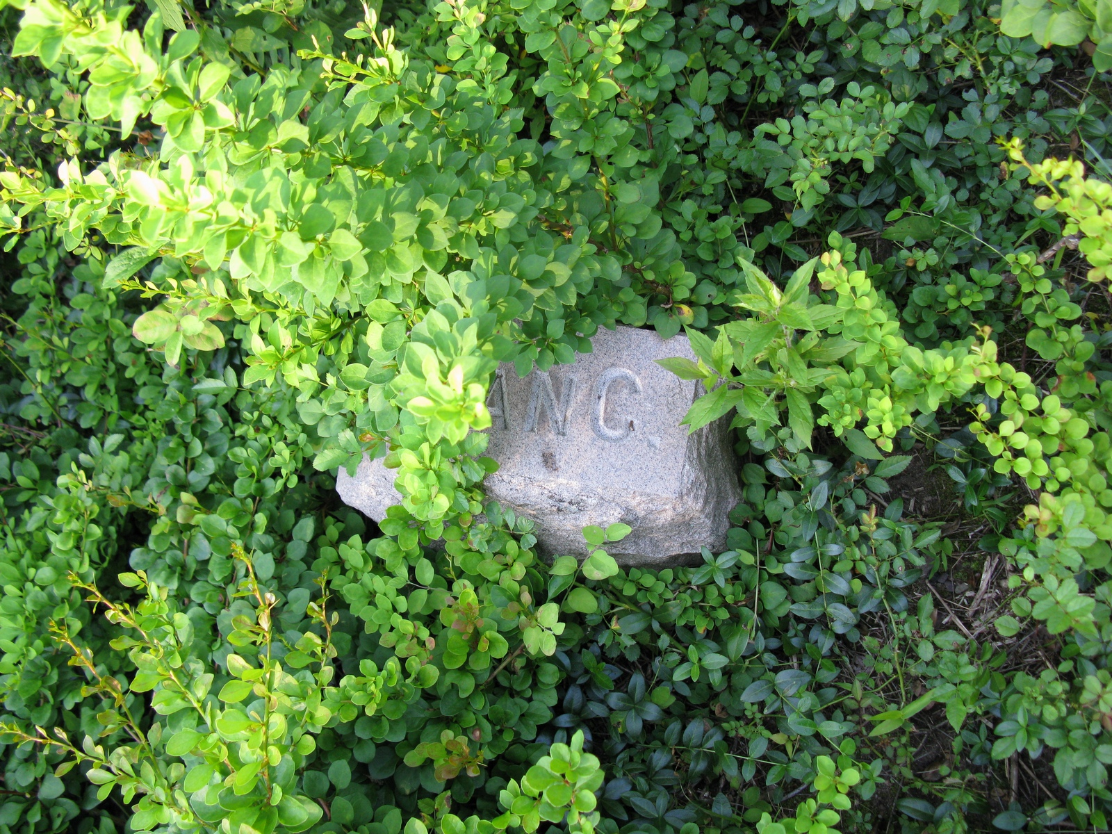 Vancampen child's grave