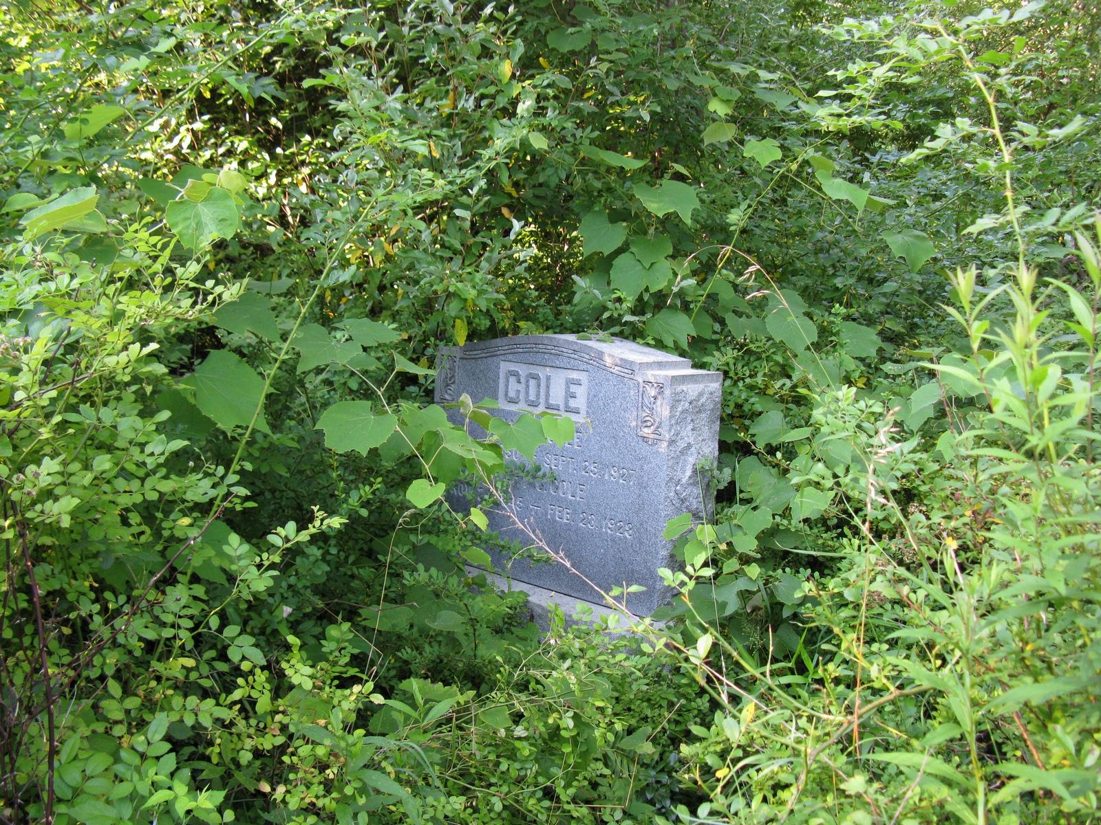 Cole graves, 1927-1928