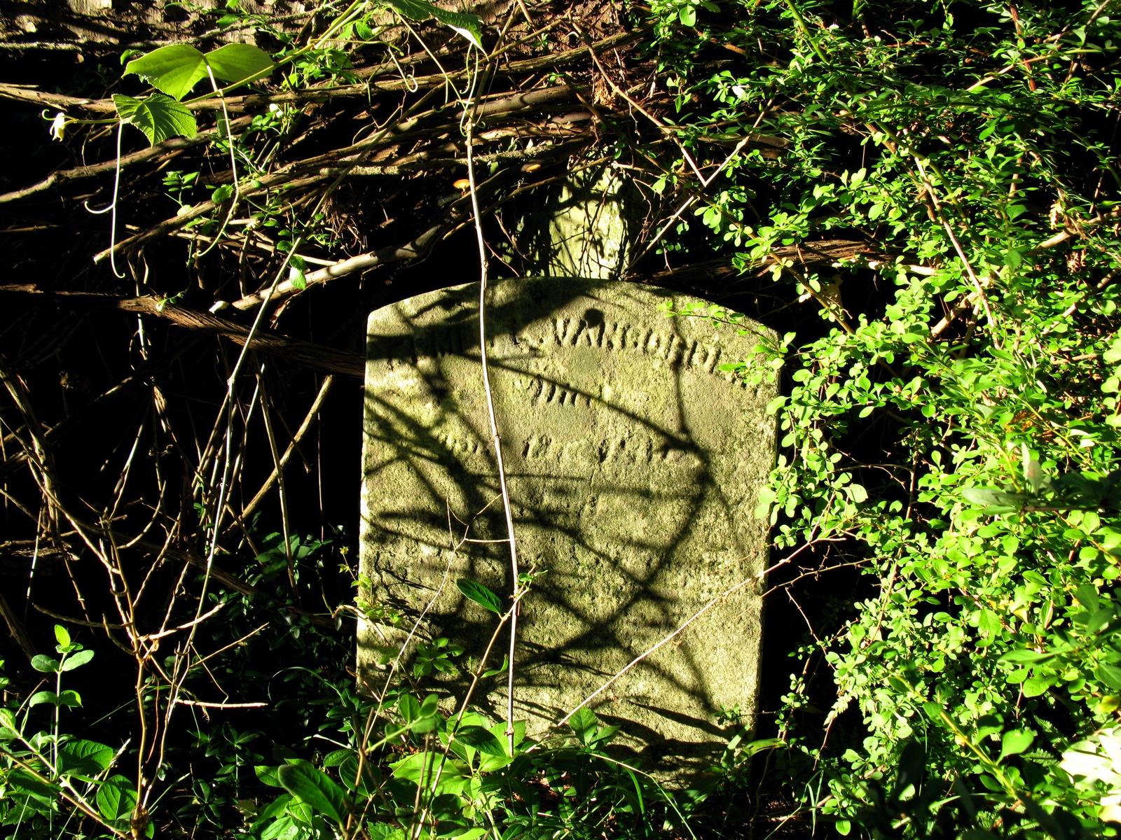 Vancorder grave